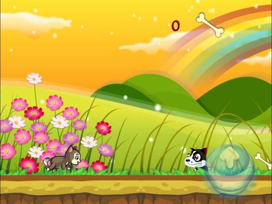 Husky Land screenshot 7