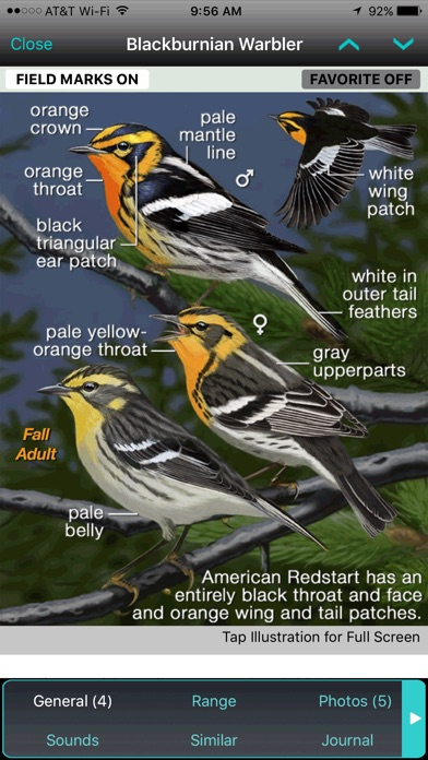 Screenshot for iBird Ultimate Guide to Birds in United States App Store