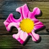 Jigsaw Puzzle: Flower game