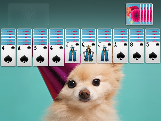 ⋆Spider Solitaire для iPad