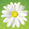 Bryn Mawr School Alumnae App