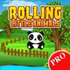 Rolling Little Animals PRO