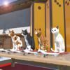 Escape Game:Sweets Shop-Wagashiya Wiki