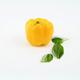 Plantbasedfoods