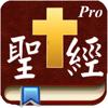 Handy Bible Chinese Pro