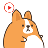 KIM KON KET - Animated Dog Corgi Stickers  artwork