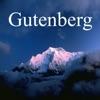 Icône : Gutenberg Project