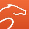 Equisense - horse riding improvement