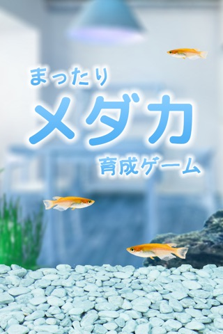 Killifish Aquarium screenshot 1