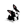 download PubbyDog Animated Stickers