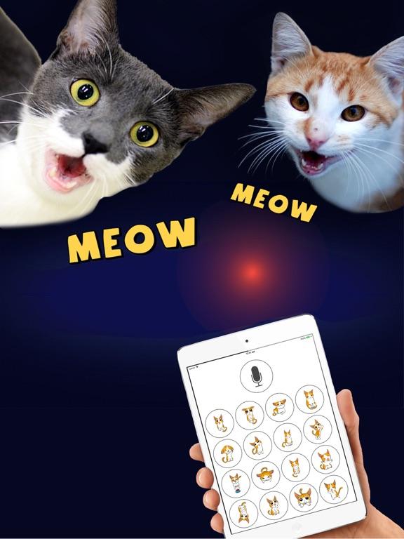 Cat Translator Deluxe Screenshots