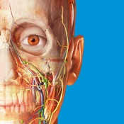 Atlante di anatomia umana 2018
