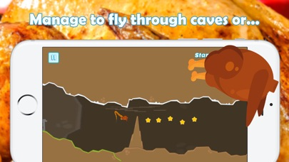 Thanksgiving Flying Turkey screenshot 2