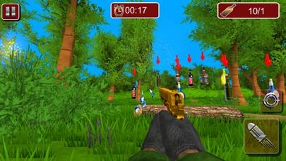 Bottles Shooting Pistol 2017 screenshot 4