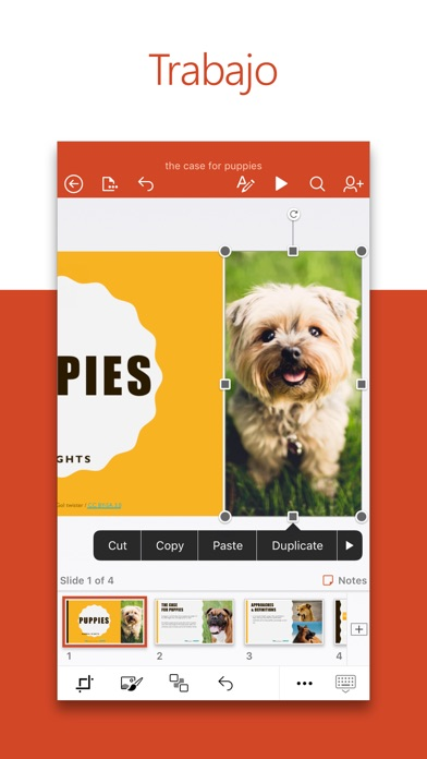 download Microsoft PowerPoint apps 3