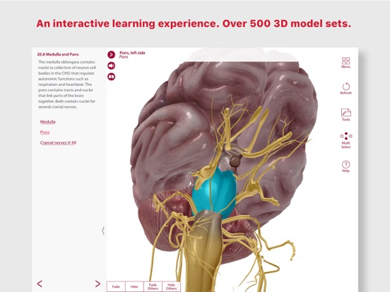 Anatomy & Physiology IPA Cracked for iOS Free Download