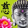 Wisdom Cards - Spiritual Guide