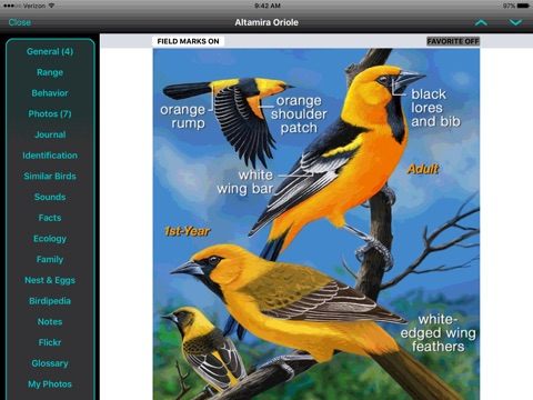 iBird Yard+ Guide to Birds screenshot 2