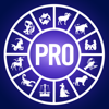 Mein Horoskop Professional