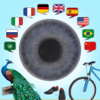 JOURIST Visual Dictionary