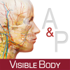 Anatomy & Physiology – An Introduction to Body Structures and Function