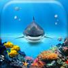 Underwater Wallpaper Gallery - Beautiful Sea Animals Backgrounds & Aquarium Lock-Screen.s