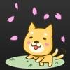 カンタ、、ごめんね。~ちょっと切ないわんこ育成アプリ~犬と私の感動の物語。