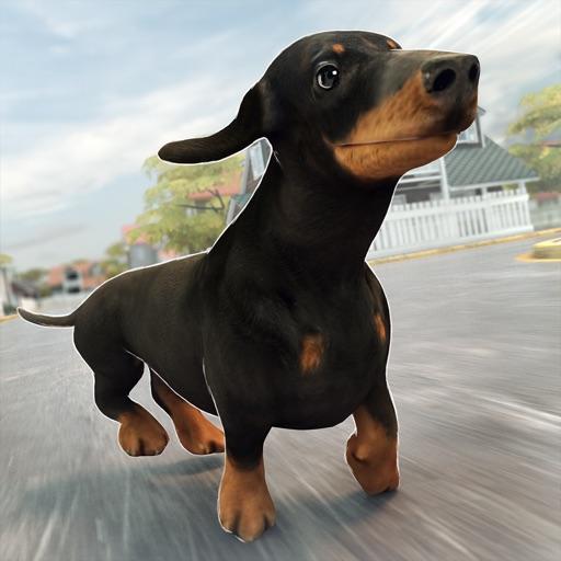 Funny Doggy | Pro Dog Running Training Simulator Game iOS App