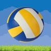 Numatix, LLC - Volleyball Volley artwork