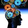 Genius Brains