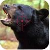 Black Stray Bear Hunt Attack Forest Hunt-Man