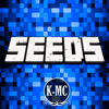 Seeds for Minecraft PE : Free Seeds Pocket Edition