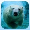 Frozen Water Hunting Challenge Pro