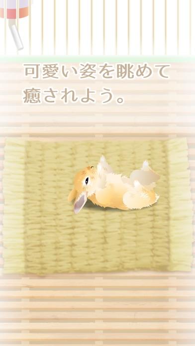 癒しのウサギ育成ゲームのスクリーンショット3