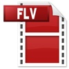 FLV Video Converter flv to wmv
