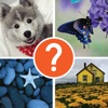 4 Pic 1 Word Thinking Game Word Guess the Picture.