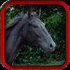 Equine Vet – Horse Medical App for all Equestrians