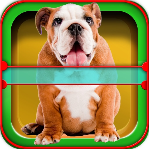 Dog Horoscope Booth: Fun games with your Pet iOS App