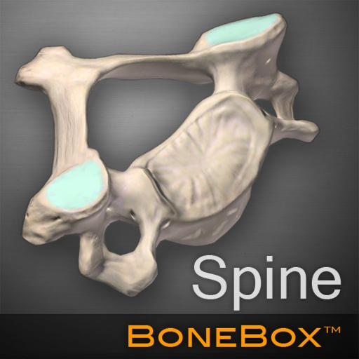 bonebox-spine