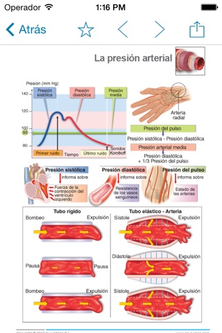 Miniatlas Hypertension screenshot 3