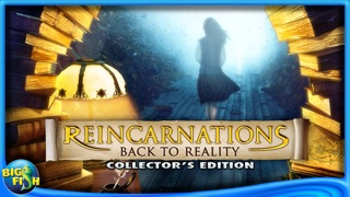 Reincarnations: Back to Reality Collector's Edition-0