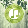 Rain Sounds Relax Melodies: Sleep zen sounds and white noise for meditation and relaxation