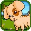 788 Little Dog Escape