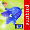 Wild Flower Id USA Photo Recognition - Eastern States Nature Guide of North America
