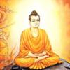 Kinh Phật (Vietnamese)