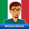 Learn to Speak Italian With MosaLingua.