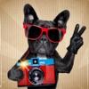 Selfie Sofortbildkamera HD