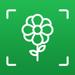 Le jardin de LikeThat - Identifier des fleurs