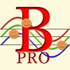 Biorhythm Pro - the rhythm of life through the biorhythm cycles, primary and secondary cycles