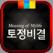2017년 토정비결 - 명품토정비결
